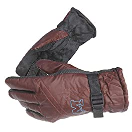 Alexvyan Anti Slip Snow Proof Soft Warm Winter Gloves for Riding, Cycling, Bike (Grey, Free Size) – 1 Pair