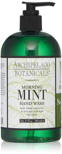 Archipelago Morning Mint Hand Wash, 17 Fl Oz