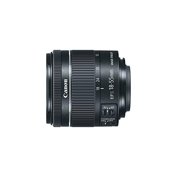 RetinaPix Canon EF-S 18-55 f/4-5.6 IS STM