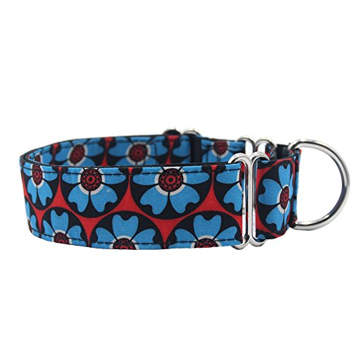 Wide Martingale Collar - EXPAWLORER Martingale Collars for Dogs, Heavy Duty Nylon Dog Collar Large
