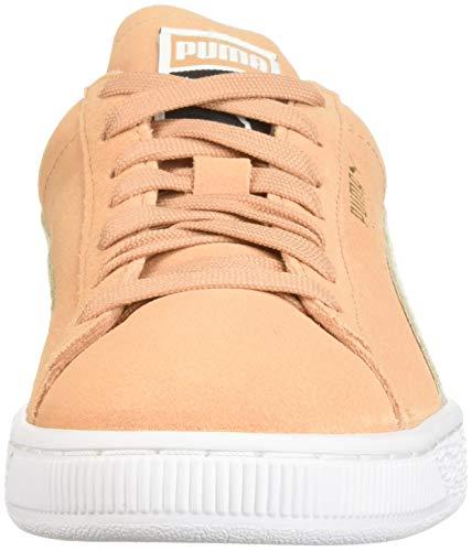 Classic Sneaker White Puma PUMA Whisper White Suede Women txEtqHz