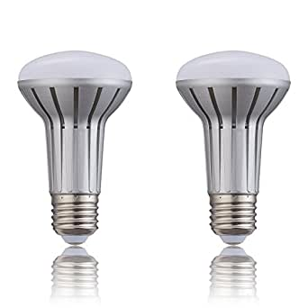 (2 Pack)BR20 R20 Sliver LED Light Bulb 5W LED High ...