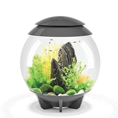 biOrb Halo 30 Aquarium with MCR Lighting - 8 Gallon, Grey