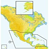 C-Map MAX Wide Central America & Caribbean SD Card