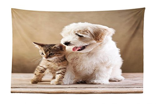 Ambesonne Animal Tapestry, Cute Baby Cat Kitten and Puppy Dog Best Friends Image Photo Artwork, Fabric Wall Hanging Decor for Bedroom Living Room Dorm, 45 W X 30 L inches, - Cute Pictures Puppies Of