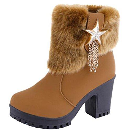 Binying Women's Platform Block Heel Zip Metal Snow Boots Brown hwRc79