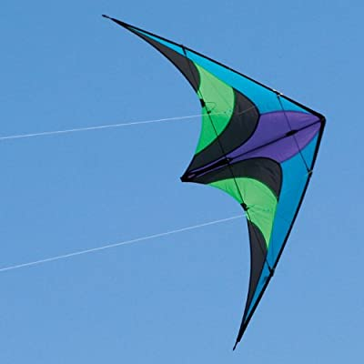 Into The Wind Scout Dual line Stunt Kite: Toys & Games