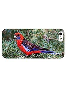 3d Full Wrap Case for iPhone ipod touch4 Animal Crimson Rosella