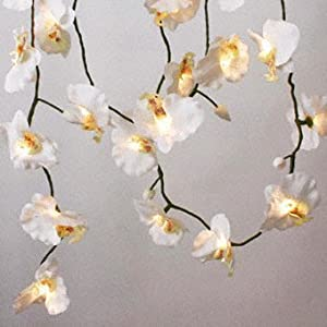 Orchid Flower String Lights 20 Rice Bulb Mains Powered: Amazon.co.uk: Computers & Accessories
