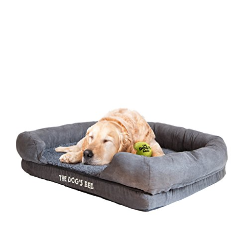 Dogs Orthopedic Waterproof Therapeutic Supportive product image