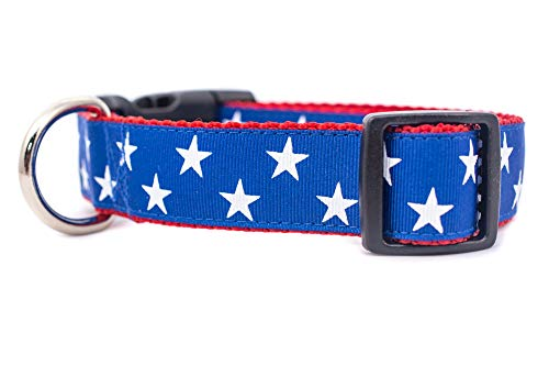 (American Star Patriotic Dog Collar 1 inch wide Large 15-22 inch 4th of July)