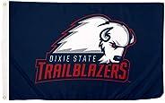Desert Cactus Dixie State University NCAA 100% Polyester Indoor Outdoor 3 feet x 5 feet Flag