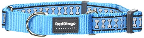 Red Dingo MC-RB-TQ-25 Martingale Collar Reflective Bones, Large, Turquoise