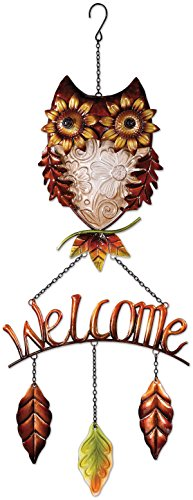 Sunset Vista Designs Owl Welcome Sign