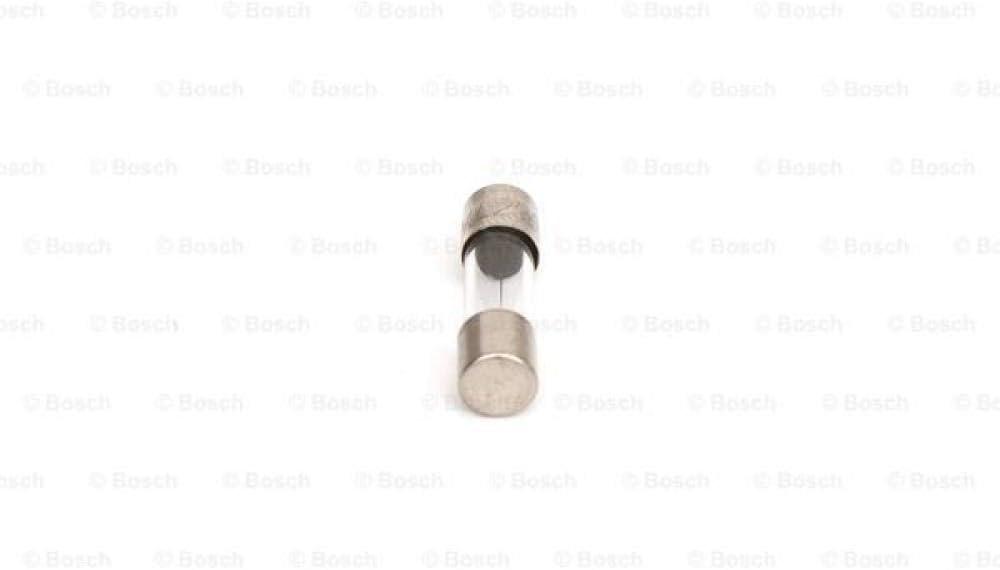 Bosch 1904521441/Sicherung