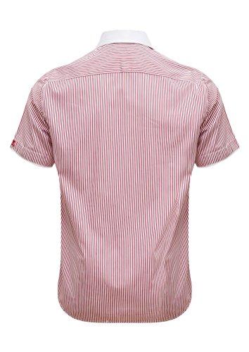 Giorgio Capone Herrenhemd, 100% Baumwolle, Rot-weiß-gestreift, Haifischkragen, Kurzarm, Slim/Normal & Regular-Plus Fit