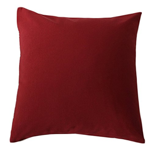 llow Sofa Cushion for Leaning On,50cm*50cm (Red) (Nox Bedding)