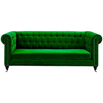Amazon.com: Tov Furniture The Hanny Collection Elegant Velvet Fabric ...