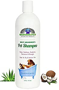 Dancing Pet Natural Pet Shampoo & Conditioner For Dog Cat Dandruff Itching Allergies Sensitive Dry Skin - Soap-free All in One Condition Moisturize Detangle Odor Smells Good Yorkie Poodle Retriever Maltese Rottweiler - Guaranteed - 16 Oz.