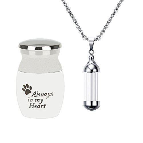 (SM SunniMix Stainless Steel Ashes Urn + Glass Empty Tube Pendant for Memorial Cremation Pets Dogs Cat Ash)