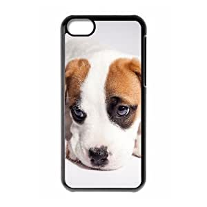 Protection Cover Hard Case Of Pit Bull Terrier Cell phone Case For Iphone 5C