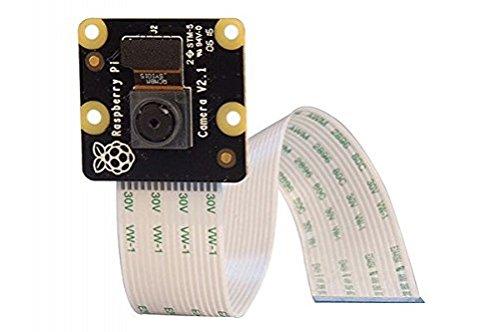 Raspberry NOIR cámara - Módulo de cámara infrarroja para Raspberry Pi: Amazon.es: Electrónica