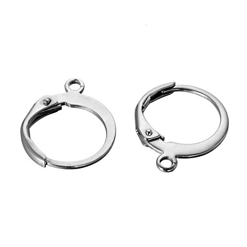 Jewelry Finding Dangle (HooAMI 10pcs Stainless Steel Lever Back Earrings Earwire Findings 14.5mmx12mm)