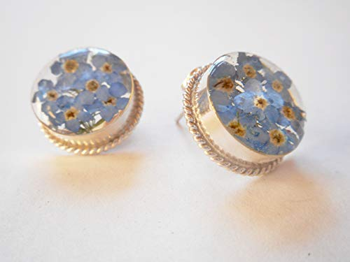 925 Silver Dry Pressed Flowers Oval Earrings Blue Forget-me-not ()