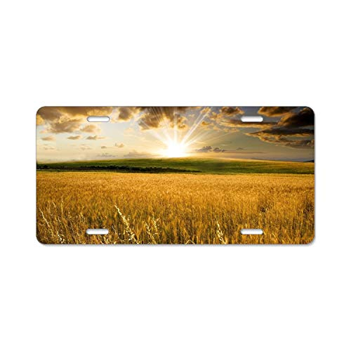 Zogpemsy Field Wheat Sunrise Sun Sunbeam Home,Bathroom and Bar Wall Decor Car Vehicle License Plate Metal Tin Sign Plaque