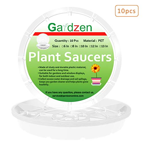 - Gardzen Heavy Duty Clear Plastic Plant Saucers, Flower Pot Tray - Excellent for Indoor & Outdoor Plants (12-Inch, 10-Pack)