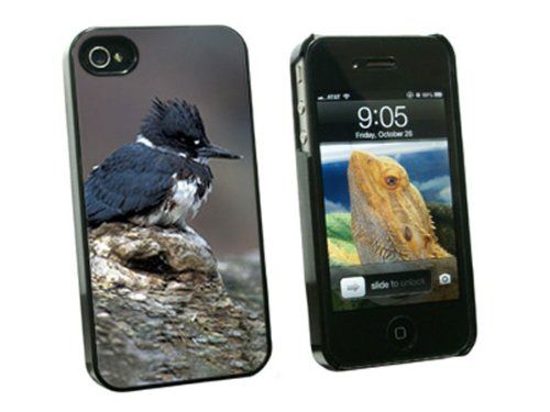 graphics-and-more-belted-kingfisher-bird-snap-on-hard-protective-case-for-apple-iphone-4-4s-black-ca