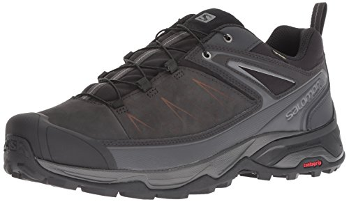 (Salomon Men's X Ultra 3 LTR GTX Hiking Shoe, Phantom/Magnet/Quiet Shade, 10.5 D US)