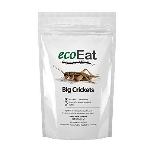 bbq crickets - 7