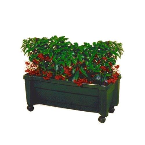 KHW 11248 Pflanzkasten Calypso mit Bewässerungssystem und Rollen 79 cm lang, 34 cm breit, 33 cm hoch, grün, 1Stck
