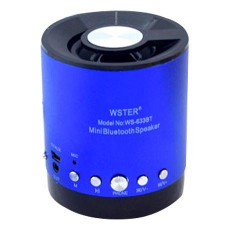 Caixa de Som Bluetooth Com Alto Falante Entrada Microfone SD USB FM - WS633BT