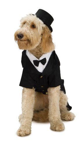 Pets In Costumes Videos (Rubie's Dapper Dog Pet Costume, Small)