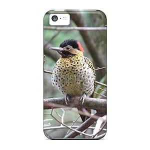 Faddish Phone Pajaro Carpintero Cases For Iphone 5c / Perfect Cases Covers