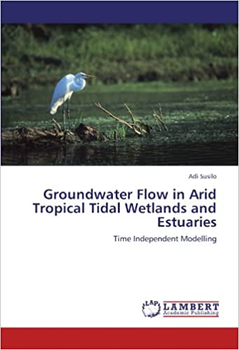 Book Groundwater Flow in Arid Tropical Tidal Wetlands and Estuaries: Time Independent Modelling