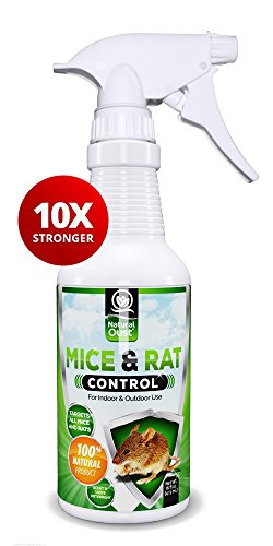 natural-oust-mouse-repellent-spray-10x-stronger-all-natural-essential-oil-formula-16-oz-deters-all-t