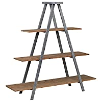 Deals on Stone & Beam Bryson A-Frame Bookcase Shelf Stand, 70.7-inch