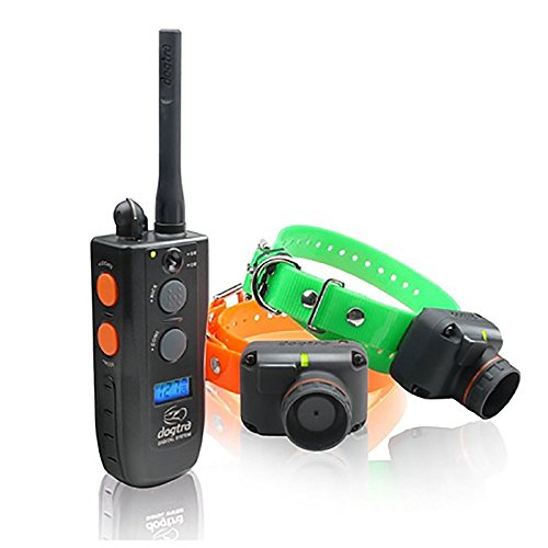 (Training and Beeper 2 Dog 1 Mile Trainer)