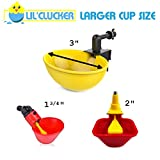Lil' Clucker Large Automatic Filling Poultry