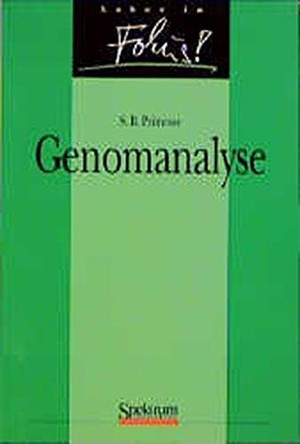 Genomanalyse