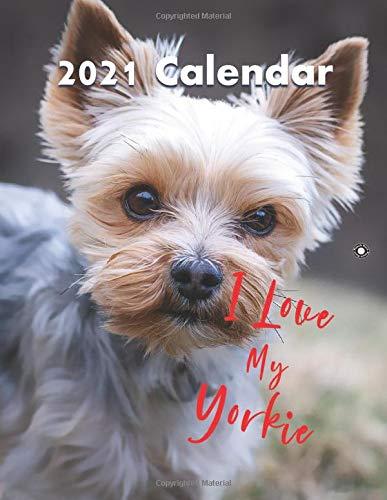 YORKSHIRE TERRIER 9x laminiert Taschenkalender 2020 pocket calendar