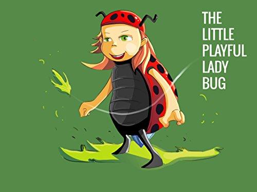 - The Little Playful Ladybug