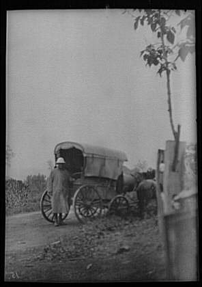 Photo: Man behind horse-drawn wagon,carts,nitrates,roads,streets,Japan,A Genthe,1908 -