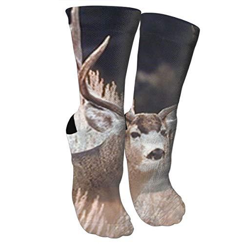 Xixioou Large Mule Deer Big Antler Rack Animal Compression Socks Training Socks Crew Athletic Socks Long Sport Soccer Socks Soft Knee High Sock Christmas Socks for Men Women