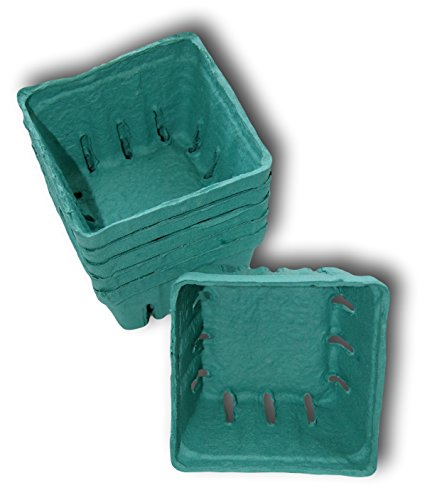 Pint Square Berry Basket Green Biodegradable - Pack of 6