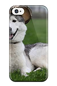 New Snap-on Valerie Lyn Miller Skin Case Cover Compatible With Iphone 4/4s- Siberian Husky Dog by lolosakes
