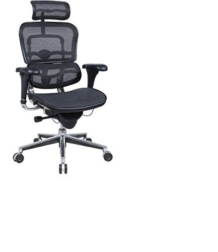 Ergohuman High Back Swivel Chair with Headrest, Black Mesh & Chrome Base (Eurotech Office Chairs)